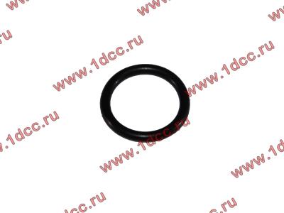 Кольцо уплотнительное форсунки резиновое H2/H3 HOWO (ХОВО) VG609070080 фото 1 Иваново