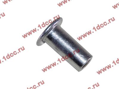 Заклепка алюминиевая 10х24 H2/H3 HOWO (ХОВО) 189000340068 AL фото 1 Иваново