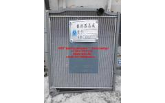 Радиатор HANIA E-3 336 л.с. фото Иваново