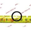 Кольцо уплотнительное форсунки резиновое H2/H3 HOWO (ХОВО) VG609070080 фото 2 Иваново