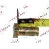 Болт пустотелый М12х1,25 (штуцер топливный) H HOWO (ХОВО) 90003962607 фото 2 Иваново