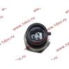 Датчик давления масла H3 HOWO (ХОВО) VG1540090035/1 фото 2 Иваново