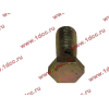 Болт пустотелый М12х1,25 (штуцер топливный) H HOWO (ХОВО) 90003962607 фото 3 Иваново
