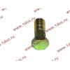 Болт пустотелый М10х1,0 (штуцер топливный) H HOWO (ХОВО) 81500070054 фото 3 Иваново